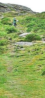 The worn path